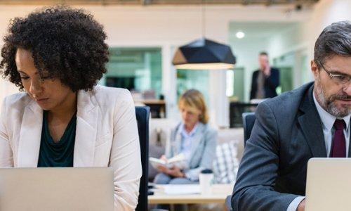Deux employés de bureau travaillent devant leur ordinateur